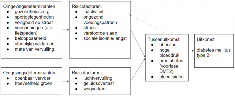 omgevingsfactoren insuline en diabetes type 2