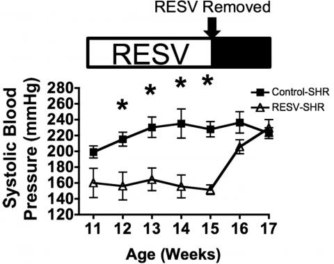 bloeddruk reguleren hypertensie